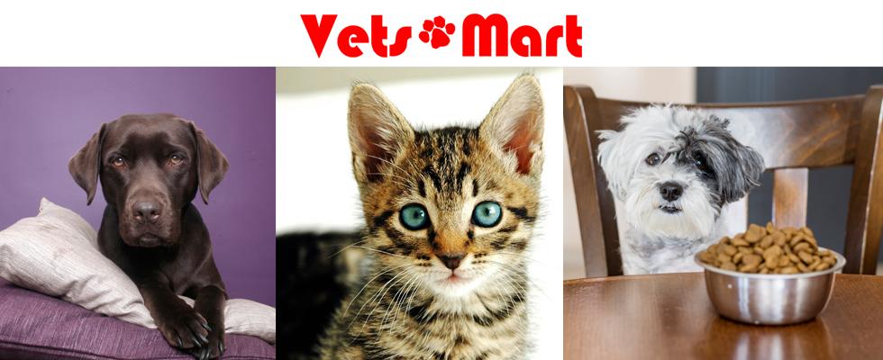 vetsmart_banner_design